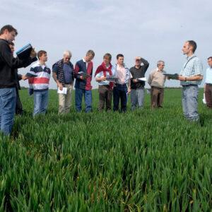 consulente per prodotti fitosanitari